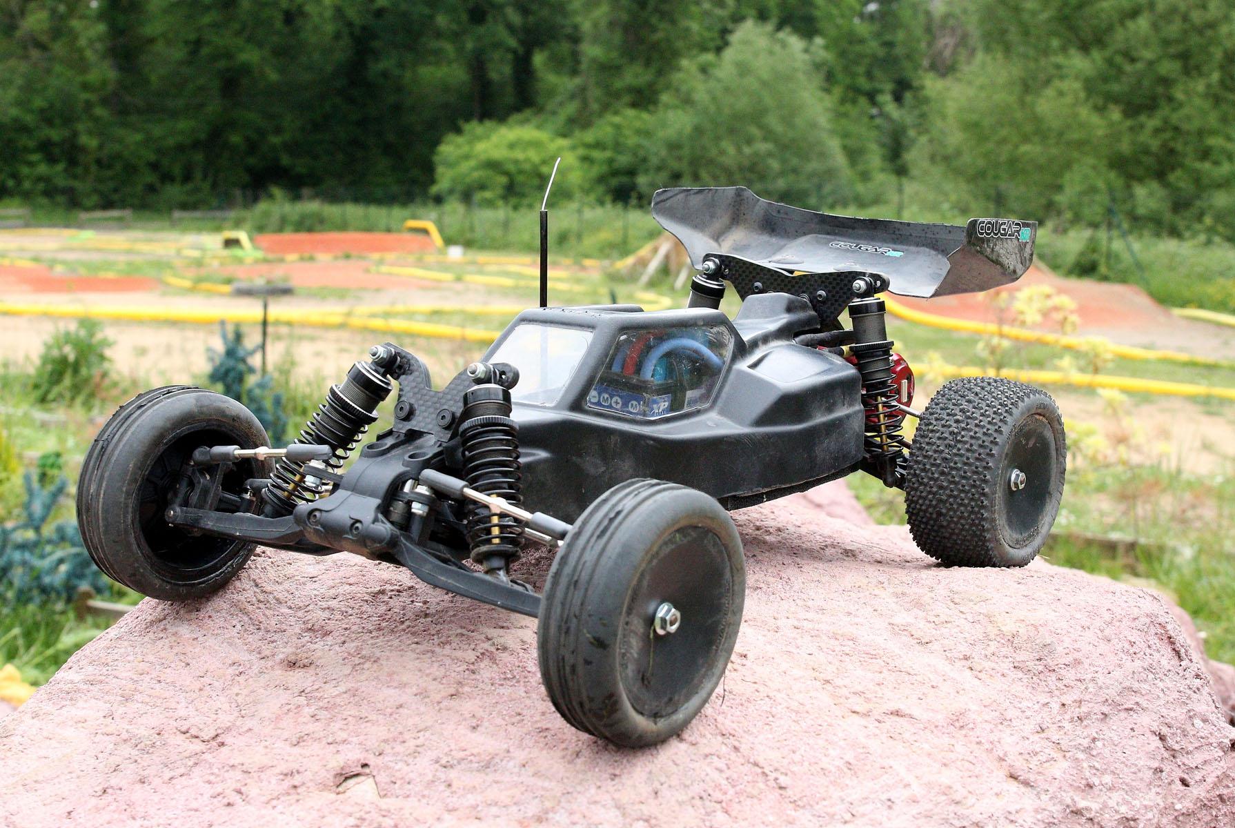Schumacher Cougar Maxime D.-1